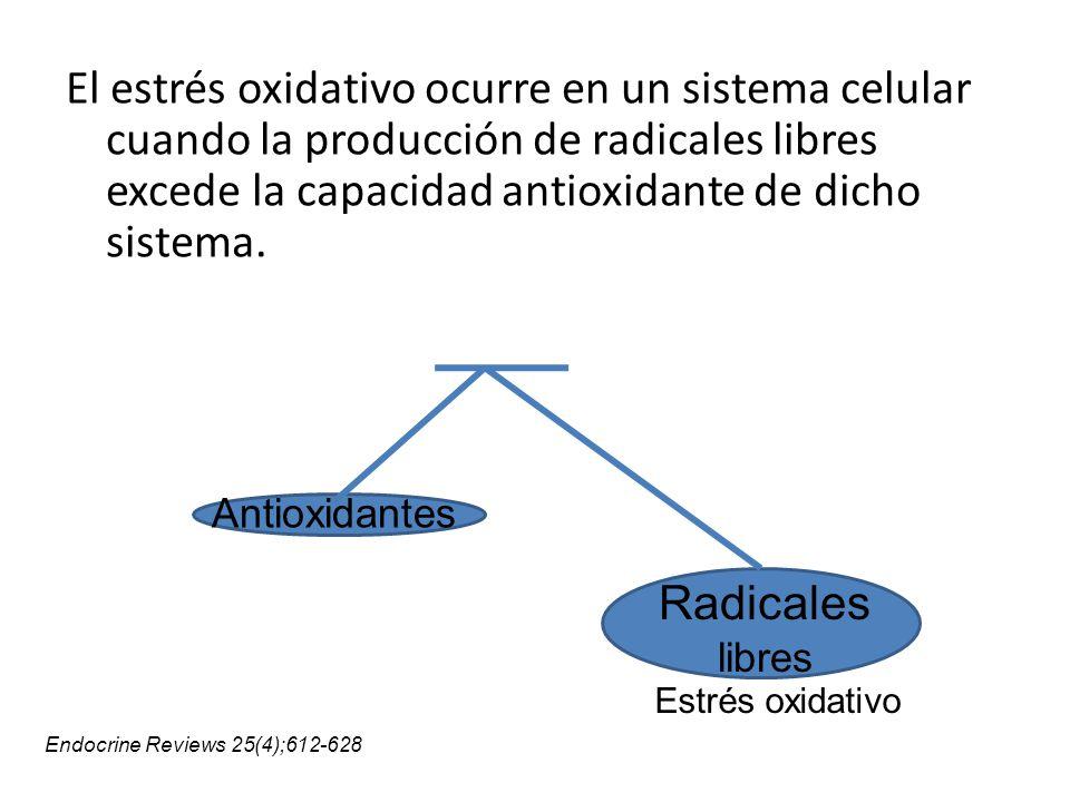 El estrés oxidativo ocurre en un sistema celular cuando la producción de radicales libres excede la capacidad antioxidante de dicho sistema. Radicales