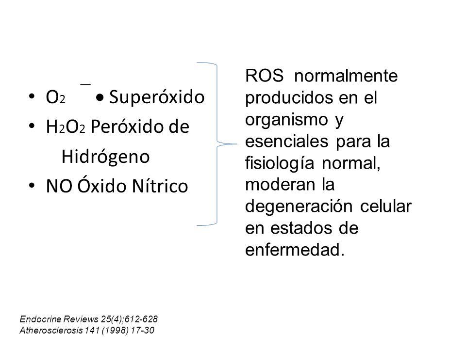 Efecto protector de la vit E Es el antioxidante liposoluble mas efectivo.
