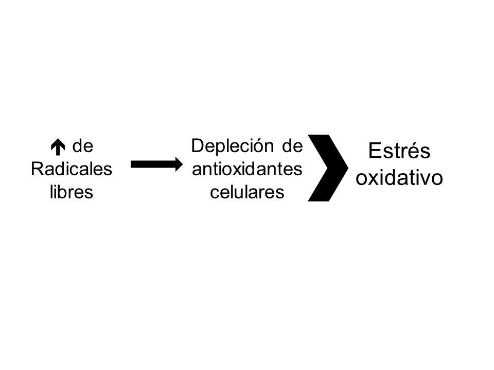 Eva L.Feldman. Oxidative stress and diabetic neuropathy: a new understanding of an old problem.