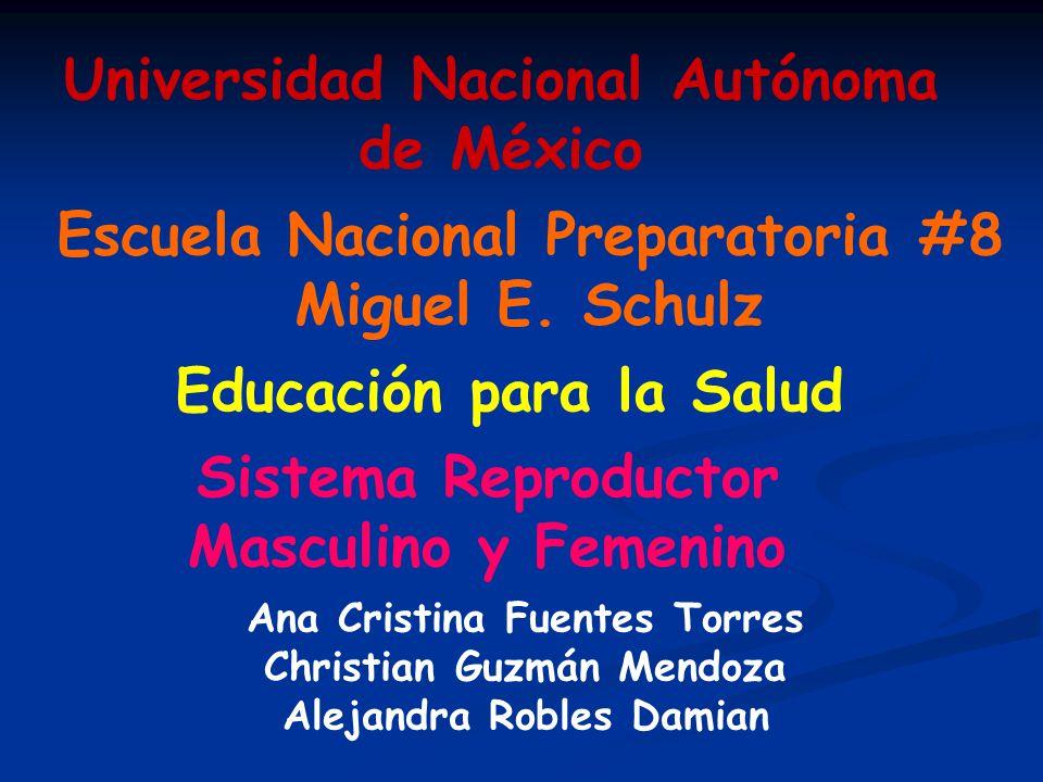 Escuela Nacional Preparatoria #8 Miguel E. Schulz Universidad Nacional Autónoma de México Educación para la Salud Sistema Reproductor Masculino y Feme