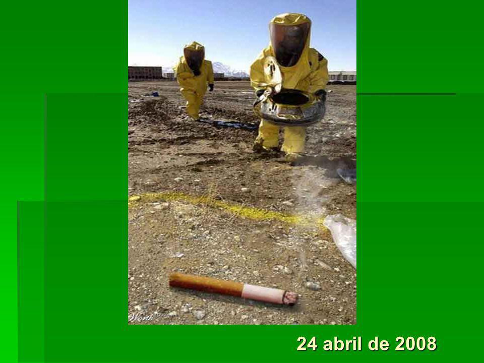 24 abril de 2008