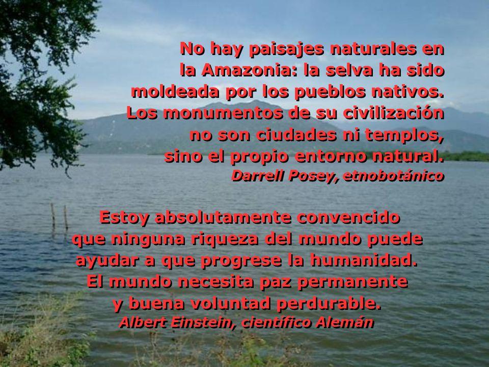 No hay paisajes naturales en la Amazonia: la selva ha sido moldeada por los pueblos nativos. Los monumentos de su civilización no son ciudades ni temp