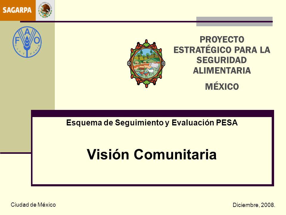 Esquema de Seguimiento y Evaluación PESA Visión Comunitaria Ciudad de México Diciembre, 2008. PROYECTO ESTRATÉGICO PARA LA SEGURIDAD ALIMENTARIA MÉXIC