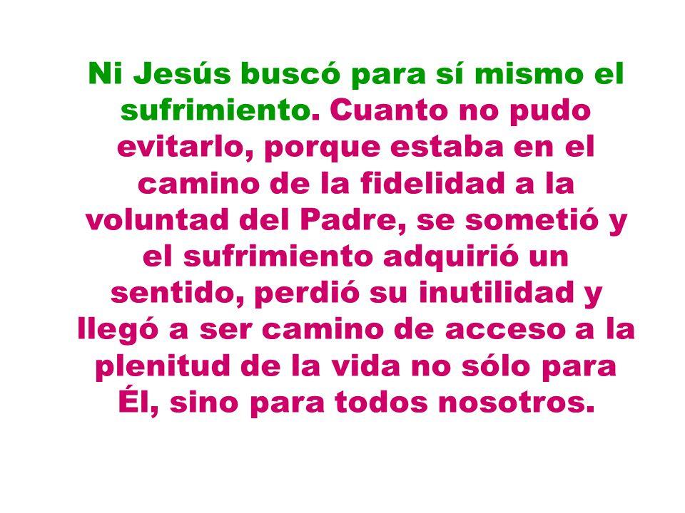 Ni Jesús buscó para sí mismo el sufrimiento. Cuanto no pudo evitarlo, porque estaba en el camino de la fidelidad a la voluntad del Padre, se sometió y