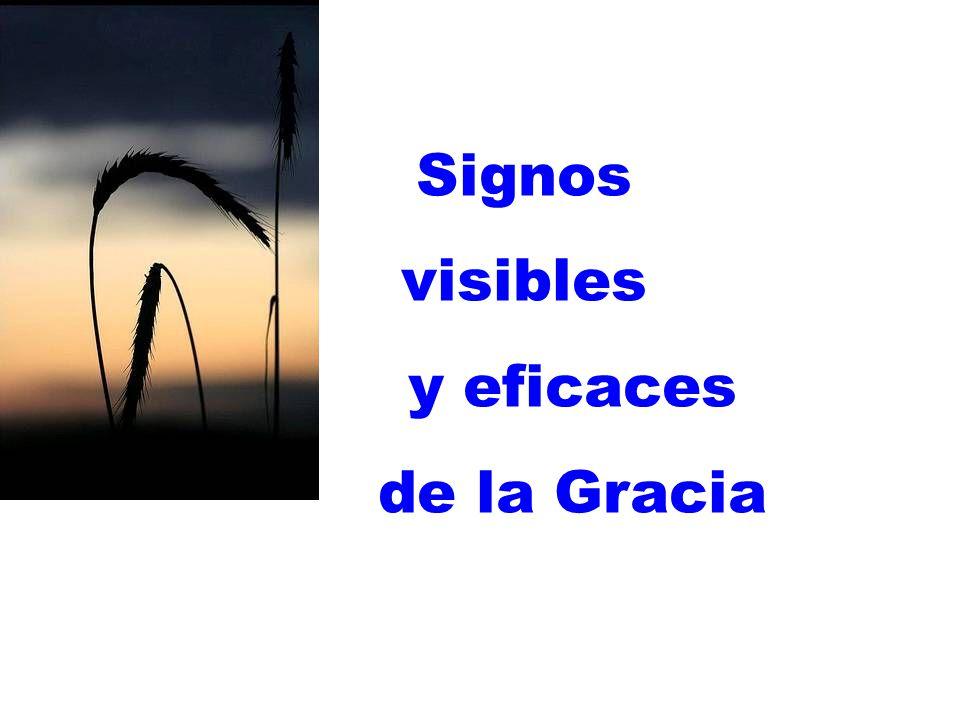 Signos visibles y eficaces de la Gracia