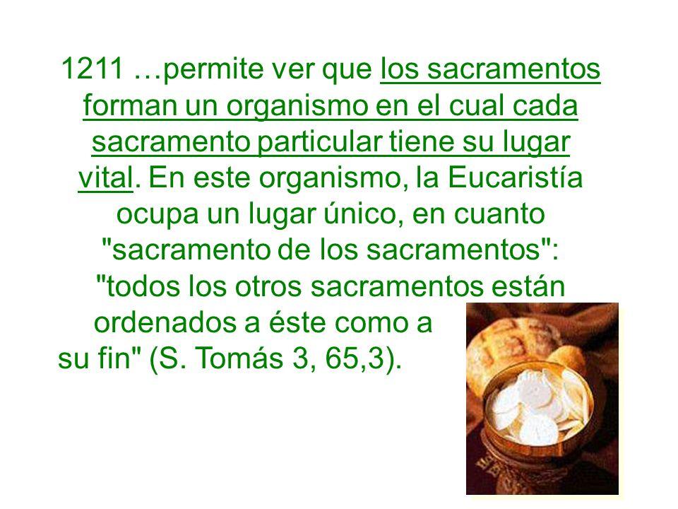 1211 …permite ver que los sacramentos forman un organismo en el cual cada sacramento particular tiene su lugar vital. En este organismo, la Eucaristía