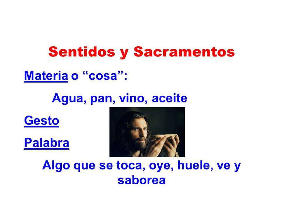 Sentidos y Sacramentos Materia o cosa: Agua, pan, vino, aceite Gesto Palabra Algo que se toca, oye, huele, ve y saborea