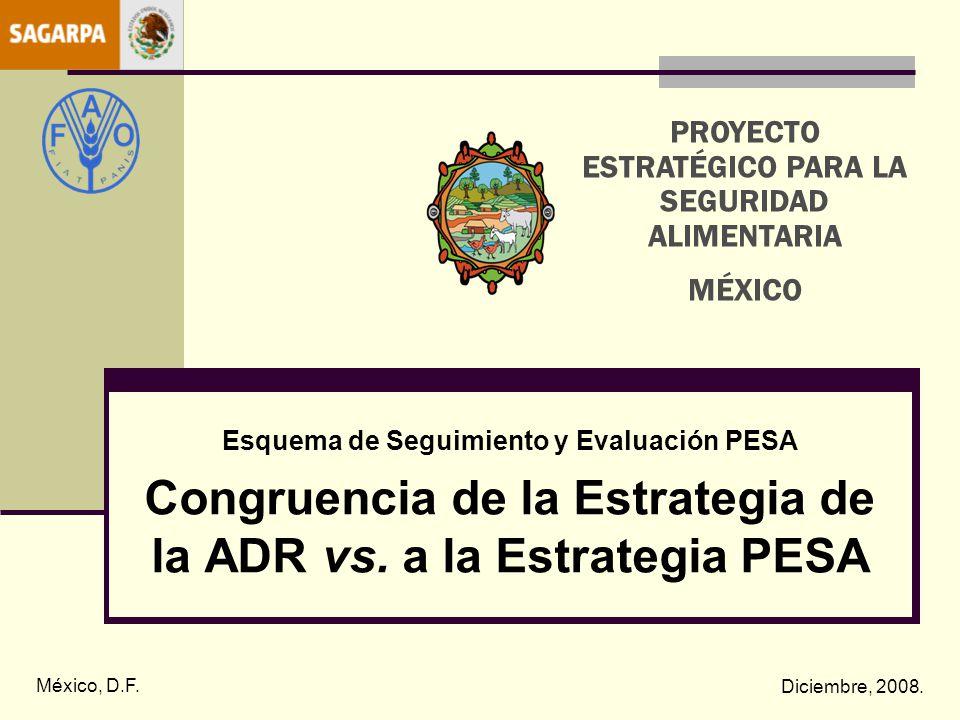 Esquema de Seguimiento y Evaluación PESA Congruencia de la Estrategia de la ADR vs. a la Estrategia PESA México, D.F. Diciembre, 2008. PROYECTO ESTRAT