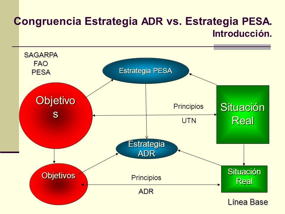 SAGARPAFAOPESA Situación Real Objetivo s Principios UTN Situación Real Línea Base Objetivos Principios ADR Estrategia PESA EstrategiaADR Congruencia E