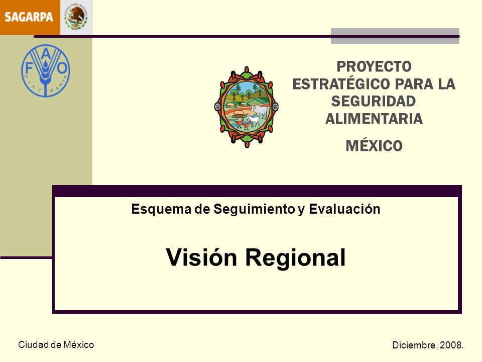 Esquema de Seguimiento y Evaluación Visión Regional Ciudad de México Diciembre, 2008. PROYECTO ESTRATÉGICO PARA LA SEGURIDAD ALIMENTARIA MÉXICO
