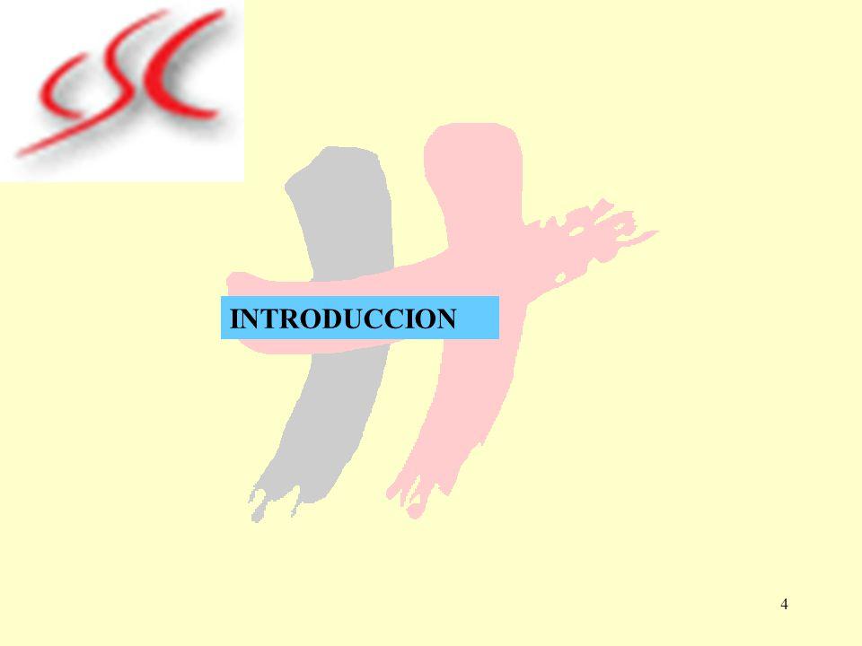 4 INTRODUCCION