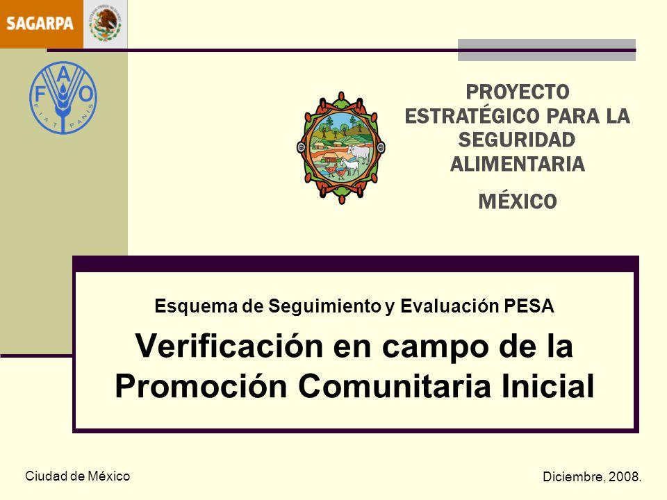 Esquema de Seguimiento y Evaluación PESA Verificación en campo de la Promoción Comunitaria Inicial Ciudad de México Diciembre, 2008. PROYECTO ESTRATÉG