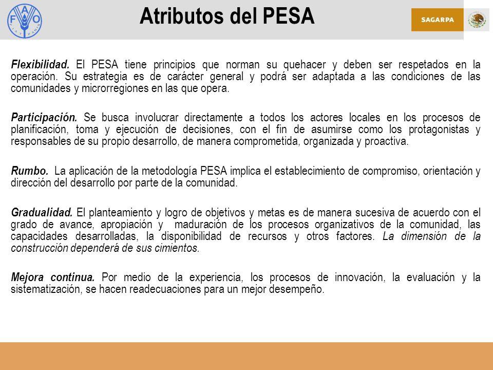 Atributos del PESA Flexibilidad.
