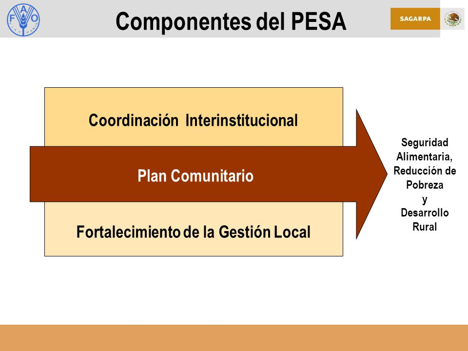 Fortalecimiento de la Gestión Local Coordinación Interinstitucional Componentes del PESA Seguridad Alimentaria, Reducción de Pobreza y Desarrollo Rural Plan Comunitario