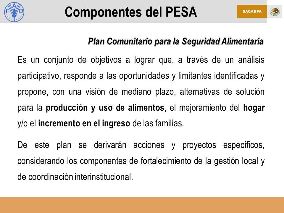 Componentes del PESA Es un conjunto de objetivos a lograr que, a través de un análisis participativo, responde a las oportunidades y limitantes identificadas y propone, con una visión de mediano plazo, alternativas de solución para la producción y uso de alimentos, el mejoramiento del hogar y/o el incremento en el ingreso de las familias.