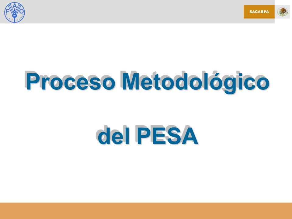 Proceso Metodológico del PESA Proceso Metodológico del PESA