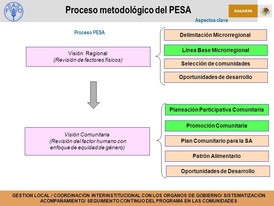Proceso metodológico del PESA Visión Regional (Revisión de factores físicos) Visión Comunitaria (Revisión del factor humano con enfoque de equidad de género) Proceso PESA Aspectos clave Selección de comunidades Línea Base Microrregional Delimitación Microrregional Oportunidades de desarrollo GESTION LOCAL / COORDINACIÓN INTERINSTITUCIONAL CON LOS ORGANOS DE GOBIERNO/ SISTEMATIZACIÓN ACOMPAÑAMIENTO/ SEGUIMIENTO CONTINUO DEL PROGRAMA EN LAS COMUNIDADES Plan Comunitario para la SA Planeación Participativa Comunitaria Patrón Alimentario Oportunidades de Desarrollo Promoción Comunitaria