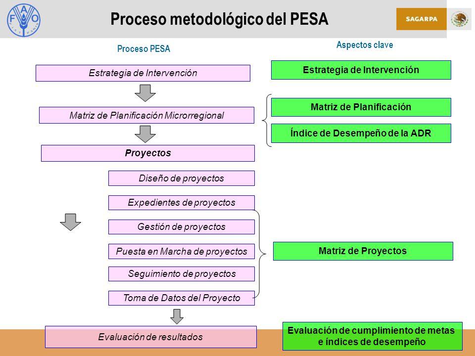 Proceso metodológico del PESA Estrategia de Intervención Proceso PESA Aspectos clave Evaluación de resultados Matriz de Planificación Microrregional Matriz de Planificación Índice de Desempeño de la ADR Matriz de Proyectos Estrategia de Intervención Proyectos Diseño de proyectos Expedientes de proyectos Gestión de proyectos Puesta en Marcha de proyectos Seguimiento de proyectos Toma de Datos del Proyecto Evaluación de cumplimiento de metas e índices de desempeño