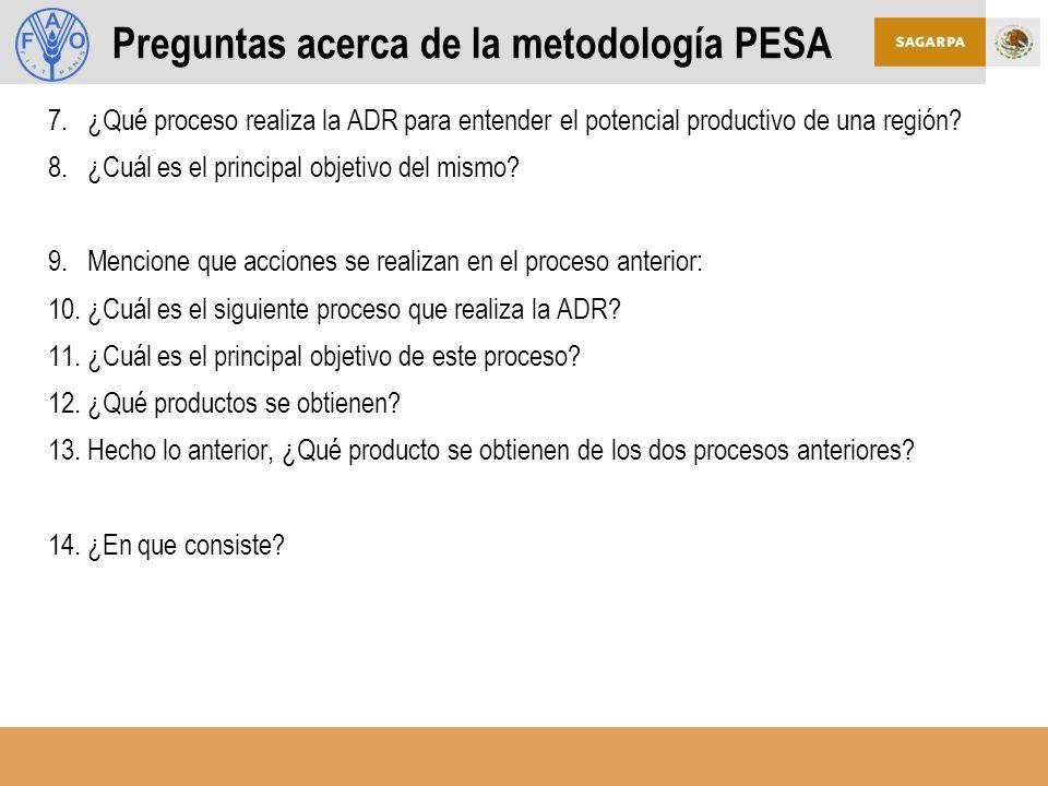 7.¿Qué proceso realiza la ADR para entender el potencial productivo de una región.