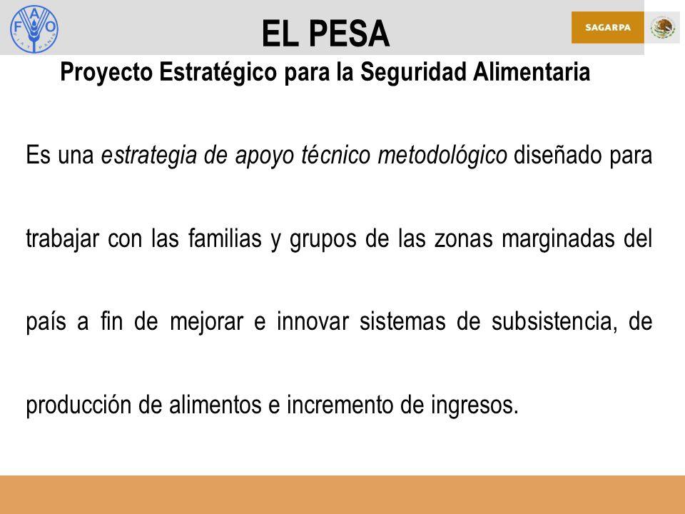 EL PESA Proyecto Estratégico para la Seguridad Alimentaria Es una estrategia de apoyo técnico metodológico diseñado para trabajar con las familias y grupos de las zonas marginadas del país a fin de mejorar e innovar sistemas de subsistencia, de producción de alimentos e incremento de ingresos.