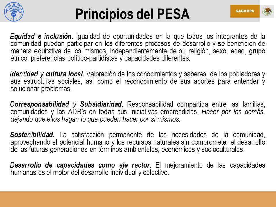 Principios del PESA Equidad e inclusión.