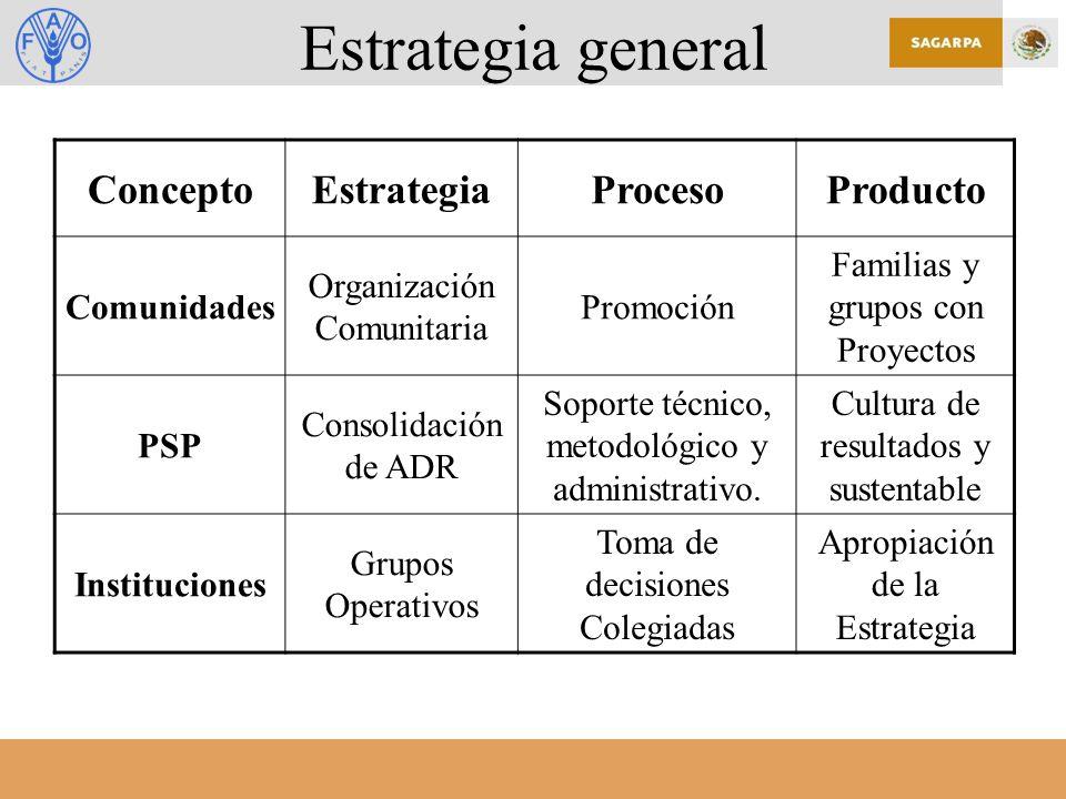 Estrategia general ConceptoEstrategiaProcesoProducto Comunidades Organización Comunitaria Promoción Familias y grupos con Proyectos PSP Consolidación de ADR Soporte técnico, metodológico y administrativo.