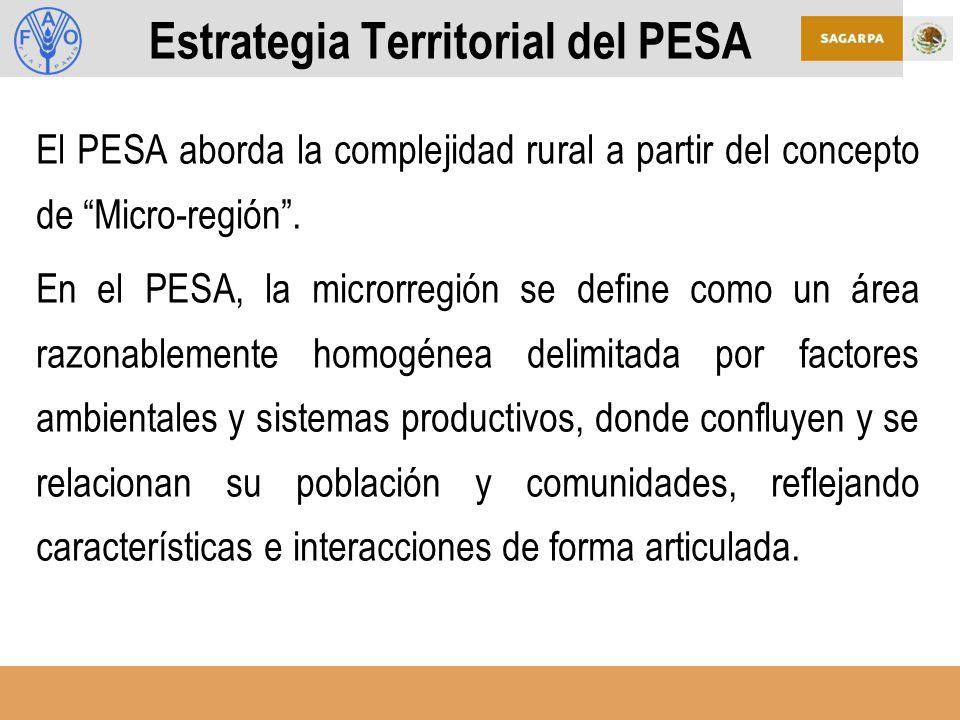 Estrategia Territorial del PESA El PESA aborda la complejidad rural a partir del concepto de Micro-región.