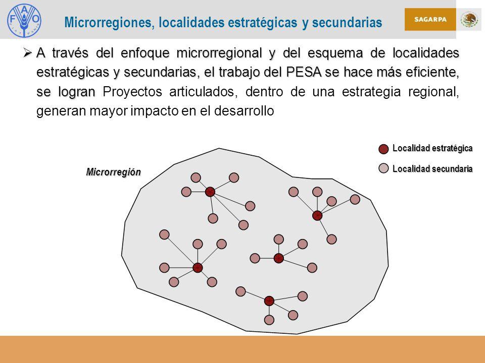 Microrregiones, localidades estratégicas y secundarias Localidad estratégica Localidad secundaria A través del enfoque microrregional y del esquema de localidades estratégicas y secundarias, el trabajo del PESA se hace más eficiente, se logran A través del enfoque microrregional y del esquema de localidades estratégicas y secundarias, el trabajo del PESA se hace más eficiente, se logran Proyectos articulados, dentro de una estrategia regional, generan mayor impacto en el desarrollo Microrregión