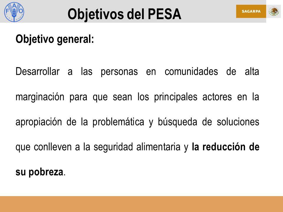 Objetivos del PESA Objetivo general: Desarrollar a las personas en comunidades de alta marginación para que sean los principales actores en la apropiación de la problemática y búsqueda de soluciones que conlleven a la seguridad alimentaria y la reducción de su pobreza.