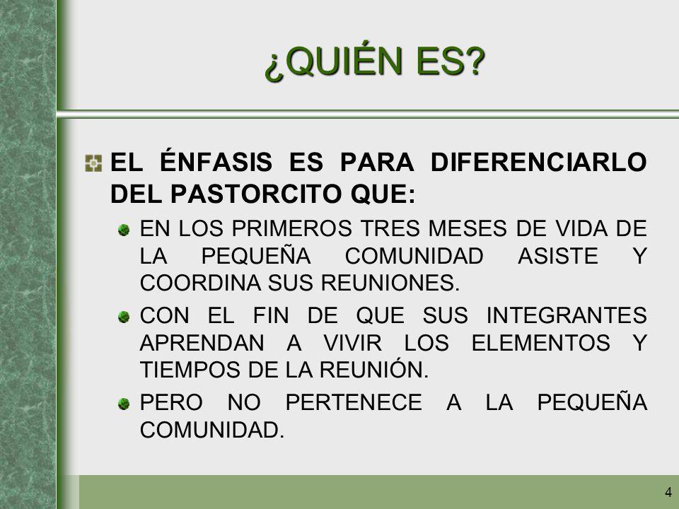 15 ESPIRITUALIDAD ENTENDIDO ASÍ, EL COORDINADOR DEBE: DESEMPEÑAR ESTA FUNCIÓN CON UN ESPÍRITU DE SERVICIO.