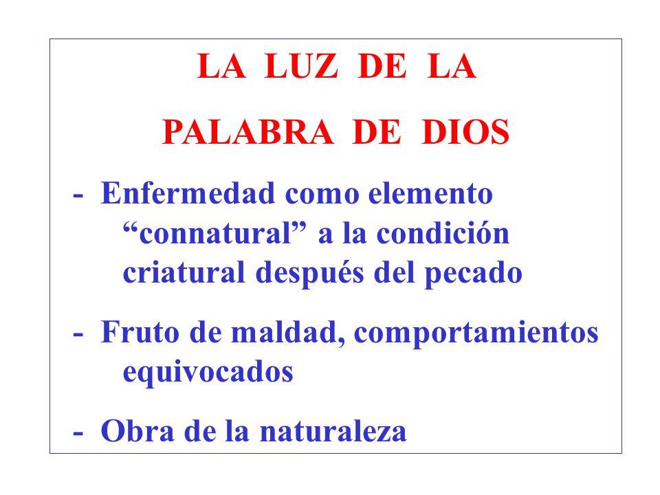 LA LUZ DE LA PALABRA DE DIOS - Enfermedad como elemento connatural a la condición criatural después del pecado - Fruto de maldad, comportamientos equi