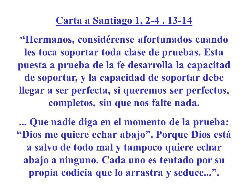 Carta a Santiago 1, 2-4. 13-14 Hermanos, considérense afortunados cuando les toca soportar toda clase de pruebas. Esta puesta a prueba de la fe desarr