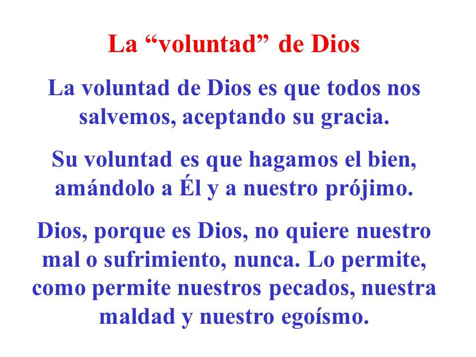 La voluntad de Dios La voluntad de Dios es que todos nos salvemos, aceptando su gracia. Su voluntad es que hagamos el bien, amándolo a Él y a nuestro