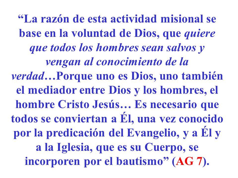 La razón de esta actividad misional se base en la voluntad de Dios, que quiere que todos los hombres sean salvos y vengan al conocimiento de la verdad…Porque uno es Dios, uno también el mediador entre Dios y los hombres, el hombre Cristo Jesús… Es necesario que todos se conviertan a Él, una vez conocido por la predicación del Evangelio, y a Él y a la Iglesia, que es su Cuerpo, se incorporen por el bautismo (AG 7).