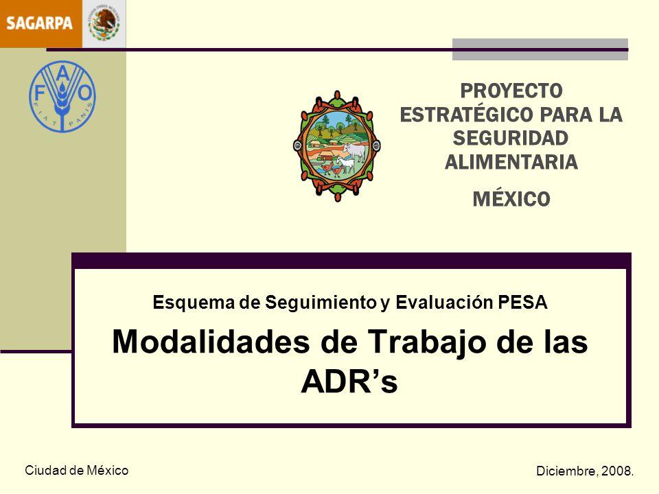 Esquema de Seguimiento y Evaluación PESA Modalidades de Trabajo de las ADRs Ciudad de México Diciembre, 2008. PROYECTO ESTRATÉGICO PARA LA SEGURIDAD A