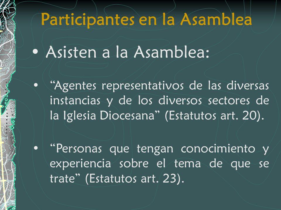 Participantes en la Asamblea Asisten a la Asamblea: Agentes representativos de las diversas instancias y de los diversos sectores de la Iglesia Diocesana (Estatutos art.