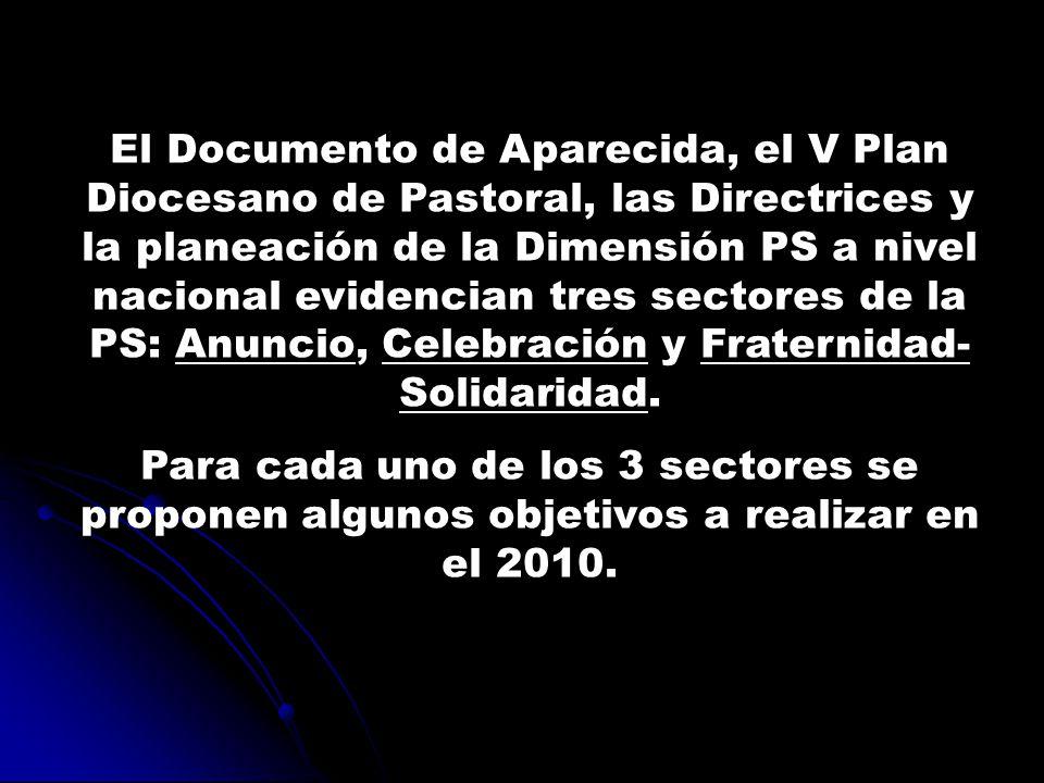 El Documento de Aparecida, el V Plan Diocesano de Pastoral, las Directrices y la planeación de la Dimensión PS a nivel nacional evidencian tres sectores de la PS: Anuncio, Celebración y Fraternidad- Solidaridad.