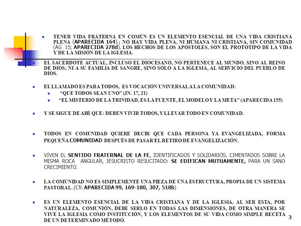 TENER VIDA FRATERNA EN COMÚN ES UN ELEMENTO ESENCIAL DE UNA VIDA CRISTIANA PLENA (APARECIDA 164).