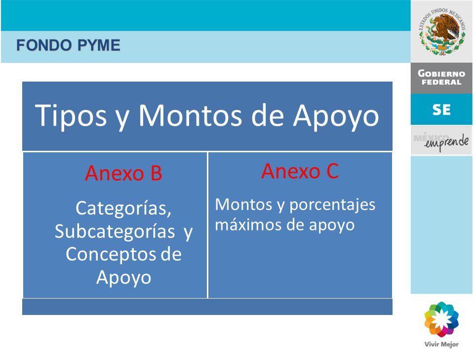 Tipos y Montos de Apoyo Anexo B Categorías, Subcategorías y Conceptos de Apoyo Anexo C Montos y porcentajes máximos de apoyo FONDO PYME