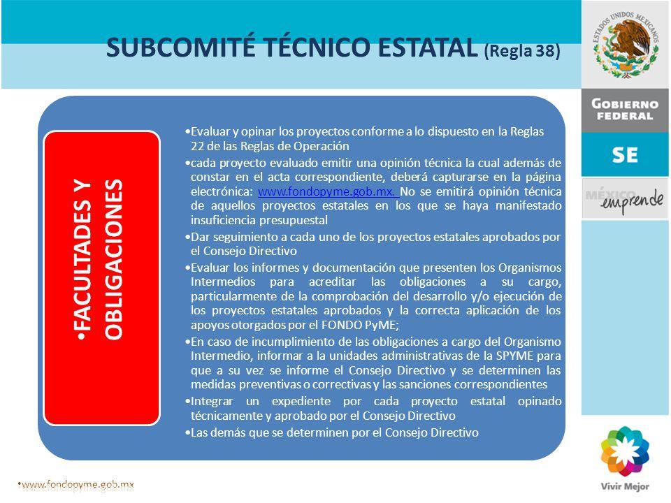SUBCOMITÉ TÉCNICO ESTATAL (Regla 38) Evaluar y opinar los proyectos conforme a lo dispuesto en la Reglas 22 de las Reglas de Operación cada proyecto e