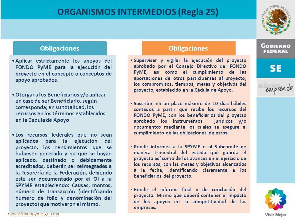ORGANISMOS INTERMEDIOS (Regla 25) Obligaciones Aplicar estrictamente los apoyos del FONDO PyME para la ejecución del proyecto en el concepto o concept