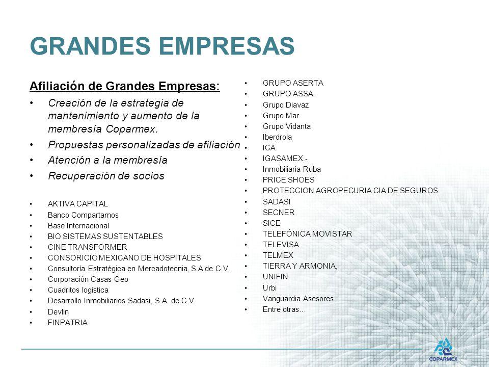 GRANDES EMPRESAS Afiliación de Grandes Empresas: Creación de la estrategia de mantenimiento y aumento de la membresía Coparmex.