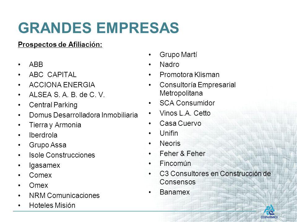 GRANDES EMPRESAS Prospectos de Afiliación: ABB ABC CAPITAL ACCIONA ENERGIA ALSEA S.