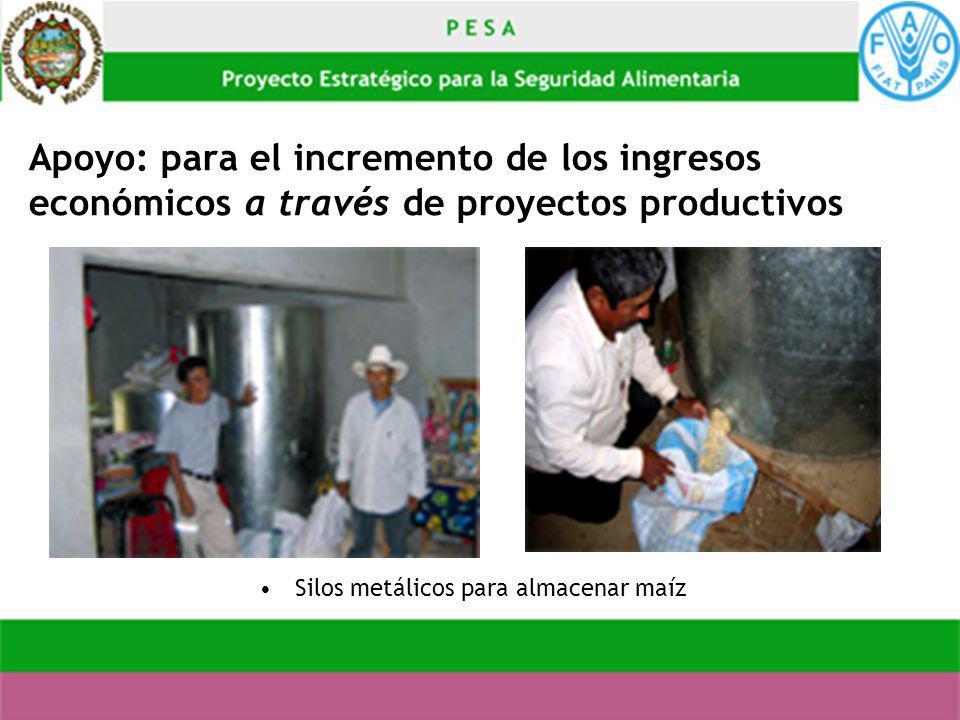 Apoyo: para el incremento de los ingresos económicos a través de proyectos productivos Silos metálicos para almacenar maíz