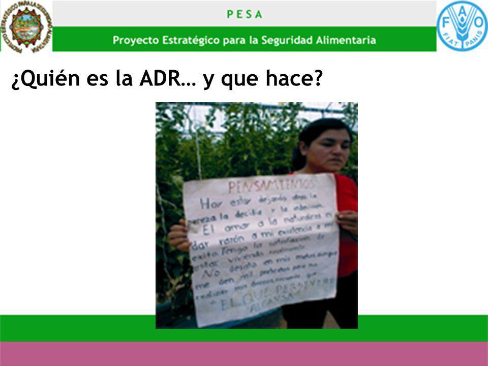¿Quién es la ADR… y que hace?
