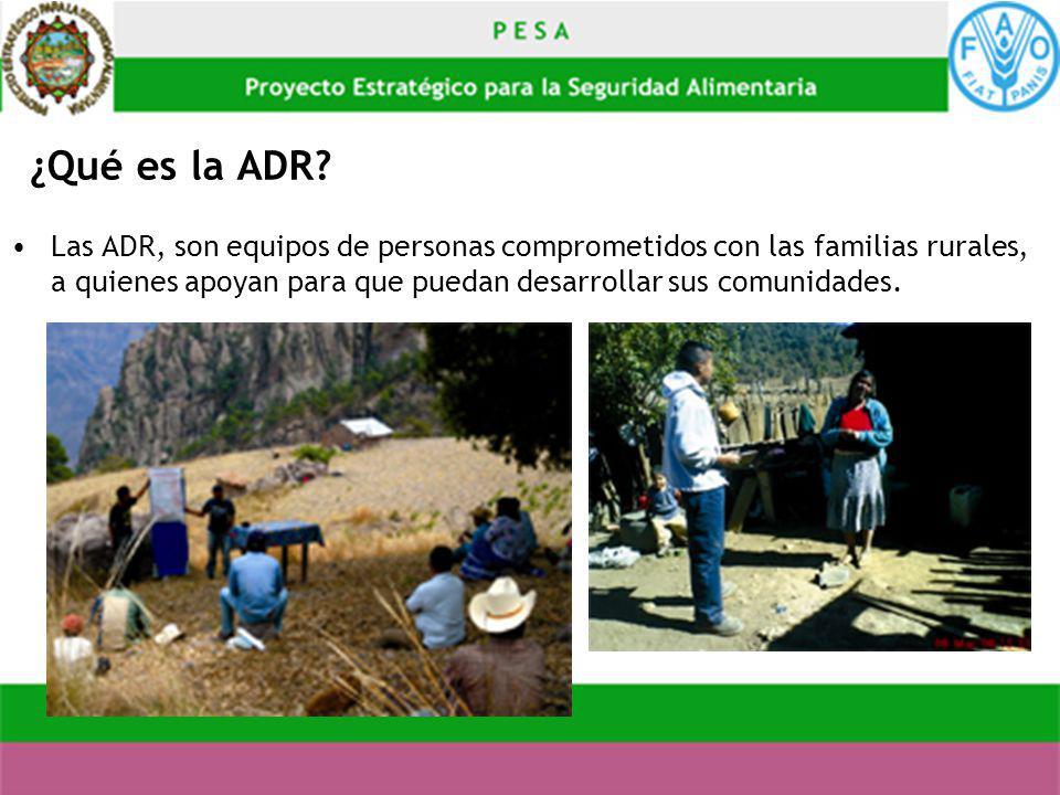 ¿Qué es la ADR? Las ADR, son equipos de personas comprometidos con las familias rurales, a quienes apoyan para que puedan desarrollar sus comunidades.