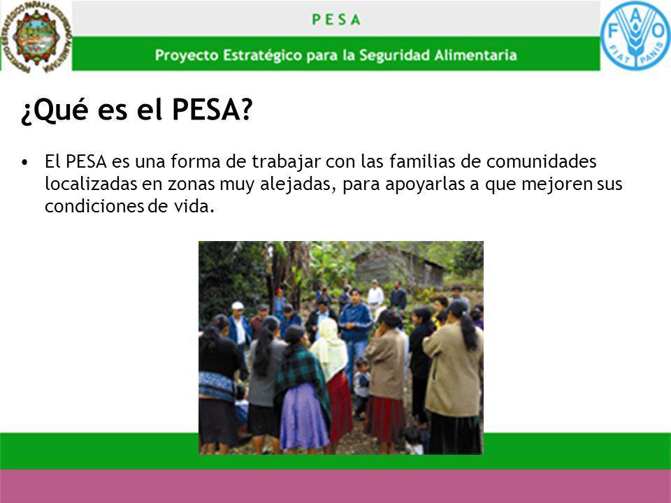 ¿Qué es el PESA? El PESA es una forma de trabajar con las familias de comunidades localizadas en zonas muy alejadas, para apoyarlas a que mejoren sus