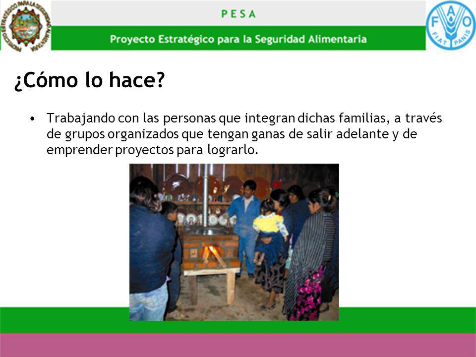 ¿Cómo lo hace? Trabajando con las personas que integran dichas familias, a través de grupos organizados que tengan ganas de salir adelante y de empren