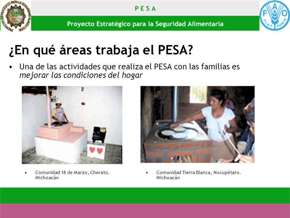 ¿En qué áreas trabaja el PESA? Una de las actividades que realiza el PESA con las familias es mejorar las condiciones del hogar Comunidad 18 de Marzo,