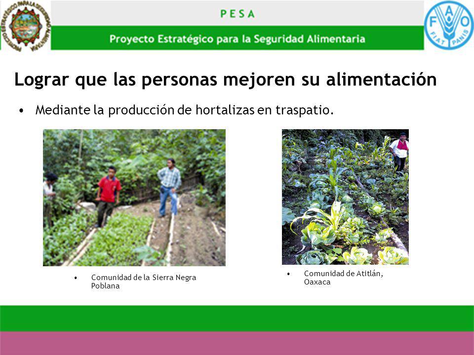 Lograr que las personas mejoren su alimentación Mediante la producción de hortalizas en traspatio. Comunidad de la Sierra Negra Poblana Comunidad de A